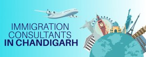 Best 10 Immigration Consultants in Chandigarh